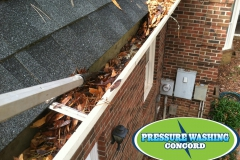 gutter_cleaning_concord_nc-1